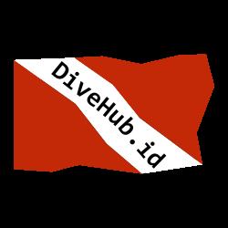 DiveHub.id Representative